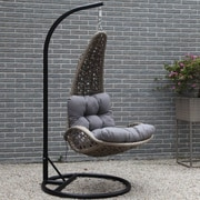 Brayden Studio Lazaro Hanging Basket Chair w/ Cushion