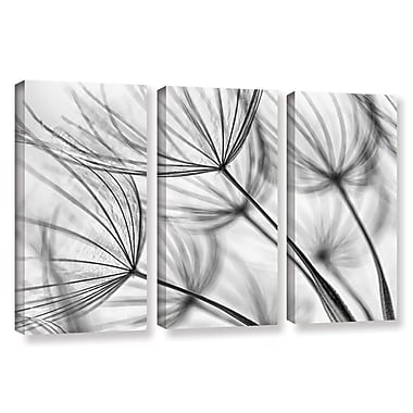 Ivy Bronx 'Parachute Seed I' 3 Piece Graphic Art on Wrapped Canvas Set; 36'' H x 54'' W x 2'' D