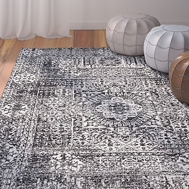 Mistana Coyne Black Area Rug; 4' x 6'