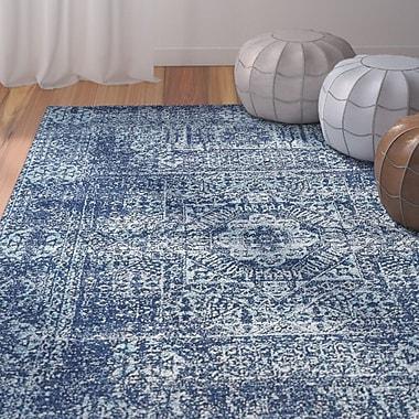 Mistana Cristian Navy Blue Area Rug; 4' x 6'