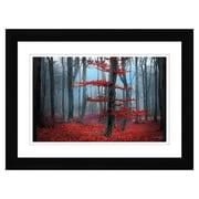 """Northland Art Dream Forest II by Elizabeth Langdon, 35"""" x 47"""" (S-ELAN08)"""