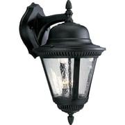Alcott Hill Triplehorn  2-Light Metal Wall Lantern; Black