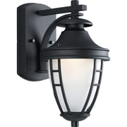 Alcott Hill Triplehorn 1-Light Wall Black Classic Lantern; Black