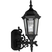 Alcott Hill Triplehorn 1-Light Incandescent Outdoor Sconce; Black