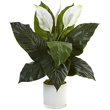 Orren Ellis Artificial Spathiphyllum Flowering Peace Lily Floral Arrangement in Planter