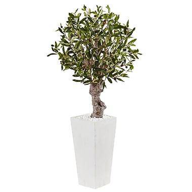 Orren Ellis Artificial Olive Floor Foliage Tree in Rectangular Planter