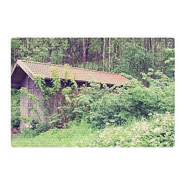 East Urban Home Sylvia Coomes Hidden Green/Nature Area Rug; 2' x 3'