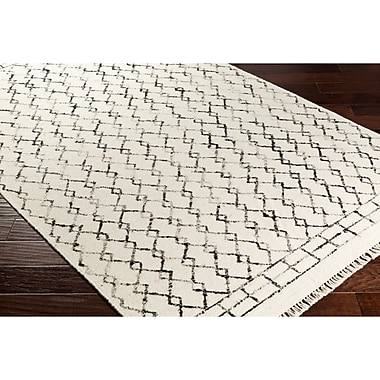 Mistana Hassani Geometric Hand-Woven Neutral/Black Area Rug; 2' x 3'