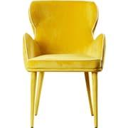 Willa Arlo Interiors Jayleen Solid Armchair