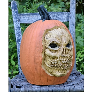 The Holiday Aisle Carved Skull Pumpkin; Orange