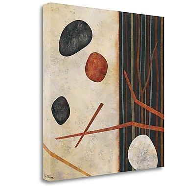 Tangletown Fine Art 'Sticks and Stones II' Graphic Art Print on Wrapped Canvas; 30'' H x 30'' W