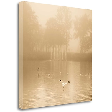 Tangletown Fine Art 'Golden Lake' Photographic Print on Wrapped Canvas; 24'' H x 24'' W