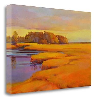 Tangletown Fine Art 'Autumn Marsh' Print on Wrapped Canvas; 22'' H x 32'' W