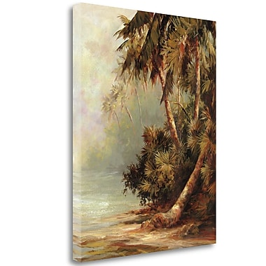 Tangletown Fine Art 'Hidden Cove' Print on Wrapped Canvas; 40'' H x 32'' W