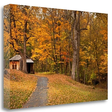 Tangletown Fine Art 'Autumn Home' Photographic Print on Wrapped Canvas; 17'' H x 26'' W