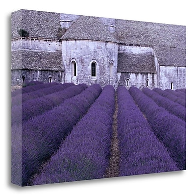 Tangletown Fine Art 'Lavender Abbey' Photographic Print on Wrapped Canvas; 19'' H x 28'' W