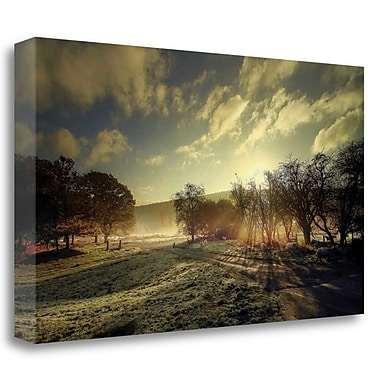 Tangletown Fine Art 'Here Comes the Sun' Photographic Print on Wrapped Canvas; 18'' H x 32'' W