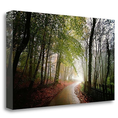 Tangletown Fine Art 'The Fence' Photographic Print on Wrapped Canvas; 24'' H x 40'' W