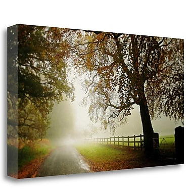 Tangletown Fine Art 'The Fog' Photographic Print on Wrapped Canvas; 16'' H x 28'' W