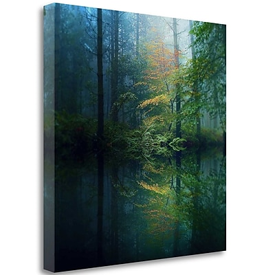Tangletown Fine Art 'The Forest' Photographic Print on Wrapped Canvas; 23'' H x 23'' W