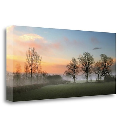 Tangletown Fine Art 'The Mist' Photographic Print on Wrapped Canvas; 18'' H x 40'' W
