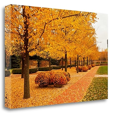 Tangletown Fine Art 'Fall Walkway' Photographic Print on Wrapped Canvas; 18'' H x 27'' W