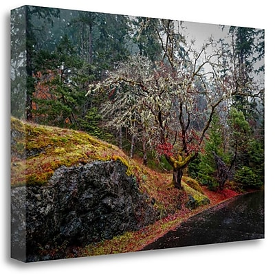Tangletown Fine Art 'On the Road' Photographic Print on Wrapped Canvas; 21'' H x 32'' W