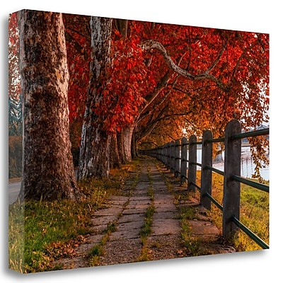Tangletown Fine Art 'Walk by the River' Photographic Print on Wrapped Canvas; 26'' H x 40'' W