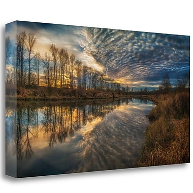 Tangletown Fine Art 'Angel Wings' Photographic Print on Wrapped Canvas; 22'' H x 40'' W