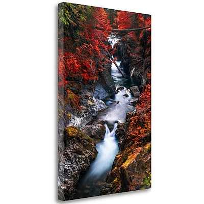 Tangletown Fine Art 'Water' Photographic Print on Wrapped Canvas; 32'' H x 21'' W