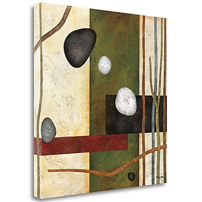 Tangletown Fine Art 'Sticks and Stones VIII' Graphic Art Print on Wrapped Canvas; 28'' H x 28'' W