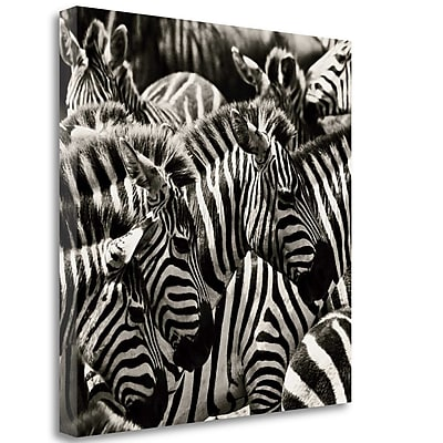 Tangletown Fine Art 'Camouflage II' Photographic Print on Wrapped Canvas; 25'' H x 25'' W