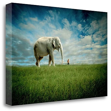 Tangletown Fine Art 'Elephant Follow Me' Graphic Art Print on Wrapped Canvas; 32'' H x 48'' W