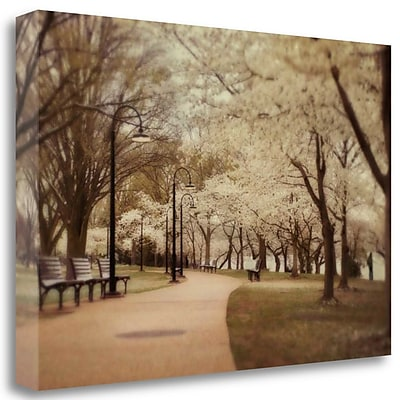 Tangletown Fine Art 'Springtime Stroll' Photographic Print on Wrapped Canvas; 20'' H x 29'' W