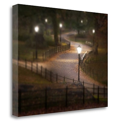 Tangletown Fine Art 'Twilight Stroll' Photographic Print on Wrapped Canvas; 21'' H x 27'' W