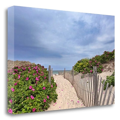 Tangletown Fine Art 'Rose Path' Photographic Print on Wrapped Canvas; 17'' H x 26'' W