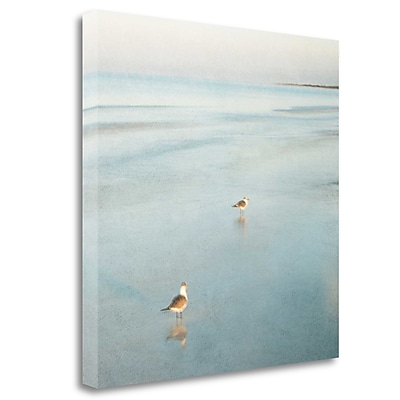 Tangletown Fine Art 'Two Birds on Beach' Graphic Art Print on Wrapped Canvas; 26'' H x 26'' W