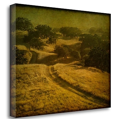 Tangletown Fine Art 'Ranch Road and Oak Savannah' Photographic Print on Wrapped Canvas