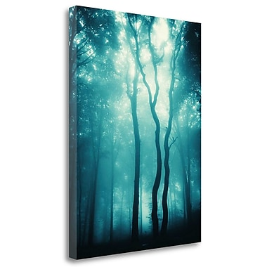 Tangletown Fine Art 'Blue Light Woods' Graphic Art Print on Wrapped Canvas; 40'' H x 30'' W