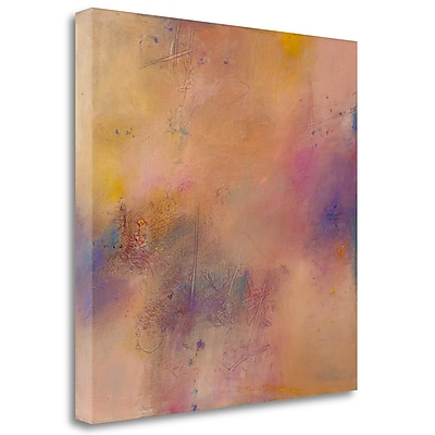Tangletown Fine Art 'Untitled Abstract No. 7' Print on Wrapped Canvas; 24'' H x 24'' W