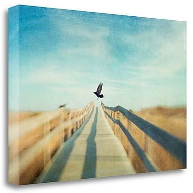 Tangletown Fine Art 'Fly' Graphic Art Print on Wrapped Canvas; 20'' H x 29'' W