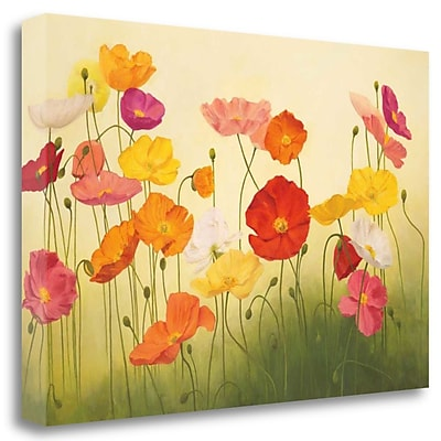 Tangletown Fine Art 'Sunlit Poppies' Graphic Art Print on Wrapped Canvas; 33'' H x 48'' W