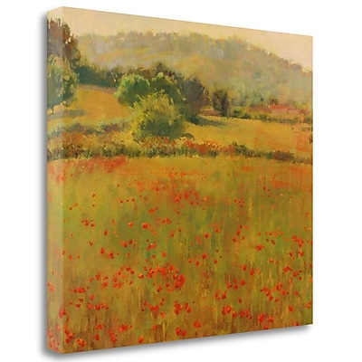 Tangletown Fine Art 'Amapolas III' Graphic Art Print on Wrapped Canvas; 23'' H x 26'' W