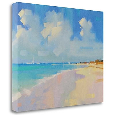 Tangletown Fine Art 'Playa 8' Print on Wrapped Canvas; 20'' H x 25'' W