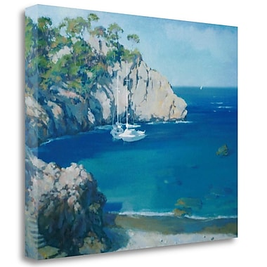 Tangletown Fine Art 'Cala Secreta' Print on Wrapped Canvas; 21'' H x 27'' W