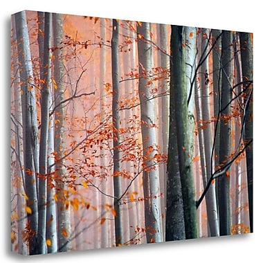 Tangletown Fine Art 'Autumn Woods' Graphic Art Print on Wrapped Canvas; 17'' H x 26'' W