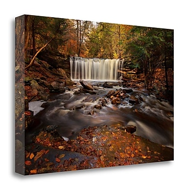Tangletown Fine Art 'Rushing Water' Photographic Print on Wrapped Canvas; 19'' H x 28'' W