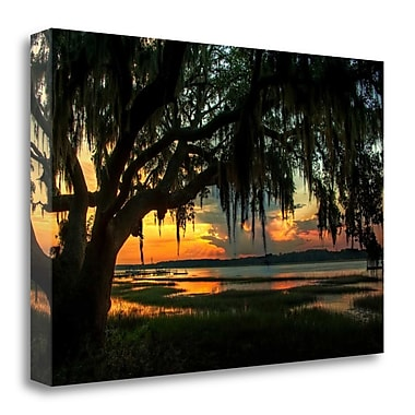 Tangletown Fine Art 'Savannah Evening' Photographic Print on Wrapped Canvas; 18'' H x 28'' W