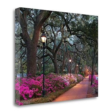 Tangletown Fine Art 'Forsythe Park' Photographic Print on Wrapped Canvas; 22'' H x 28'' W