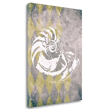 Tangletown Fine Art 'Vintage Harlequin Shell 1' Graphic Art Print on Wrapped Canvas; 29'' H x 21'' W